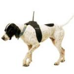 Oprema za lovačke pse